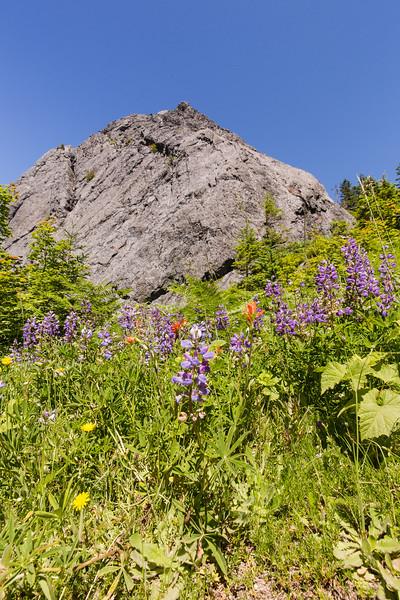 2017-07-08 - Mt. Si Hike