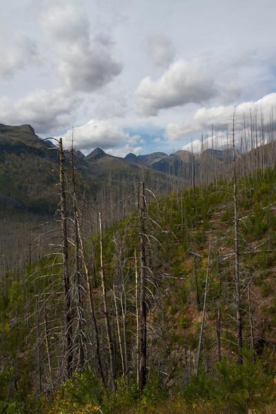 01_Glacier National Park_Montana-32.jpg