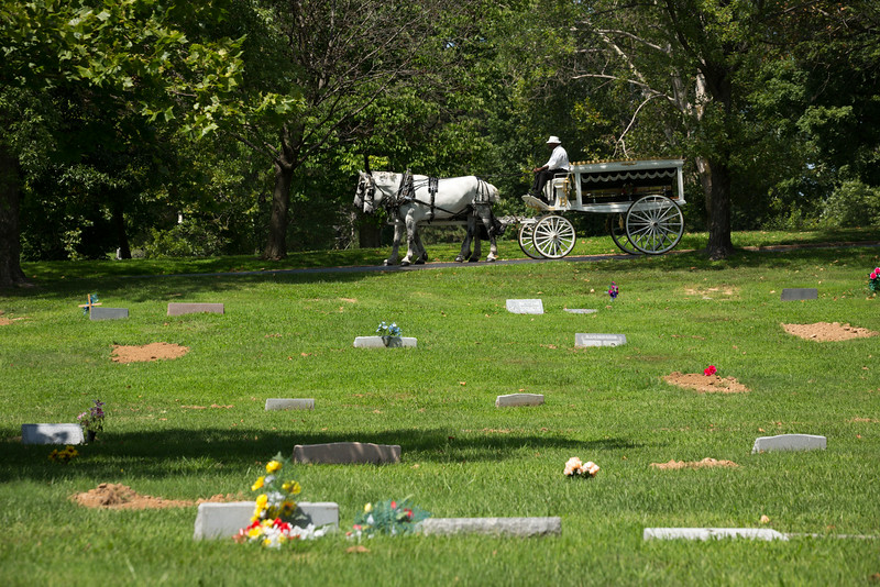 . The casket is brought by horse drawn carriage during the funeral for Michael Brown at St. Peters Cemetery on August 25, 2014 in St. Louis Missouri. Michael Brown, an 18 year-old unarmed teenager, was shot and killed by  Ferguson Police Officer Darren Wilson in the nearby town of Ferguson, Missouri on August 9. His death caused several days of violent protests along with rioting and looting in Ferguson.  (Photo by Richard Perry-Pool/Getty Images)