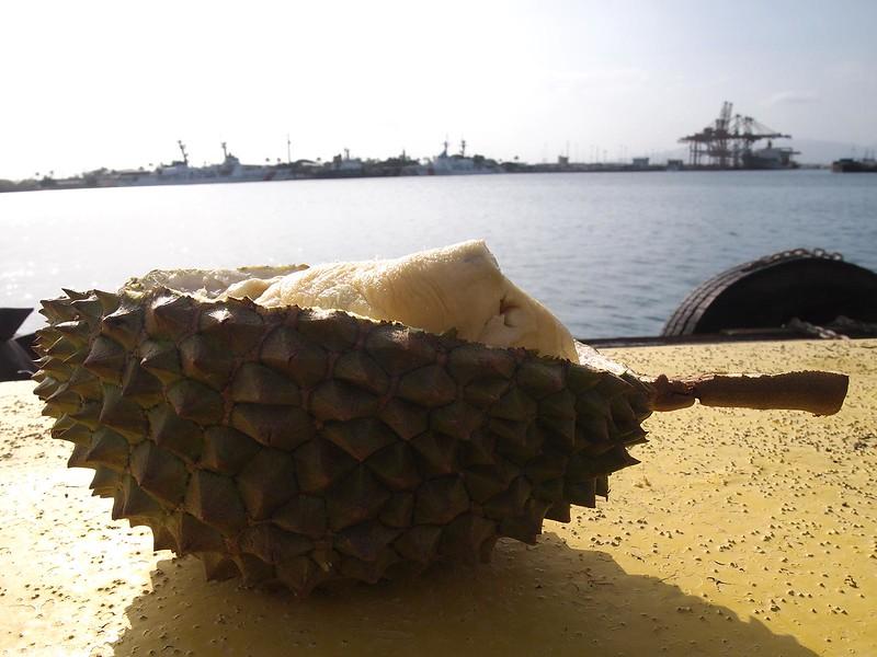 Honolulu-Aloha-Durian.jpg