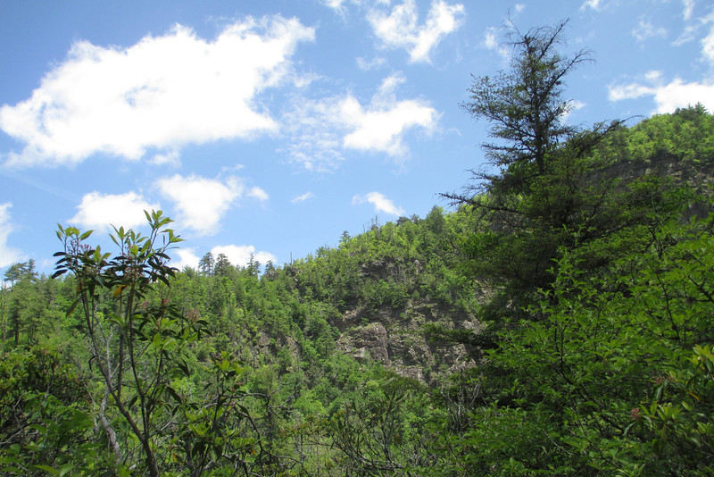 Through brief breaks in the trees I got my first close glimpses of Bynum Bluffs themselves...