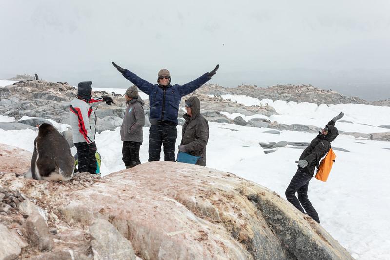 2019_01_Antarktis_05276.jpg