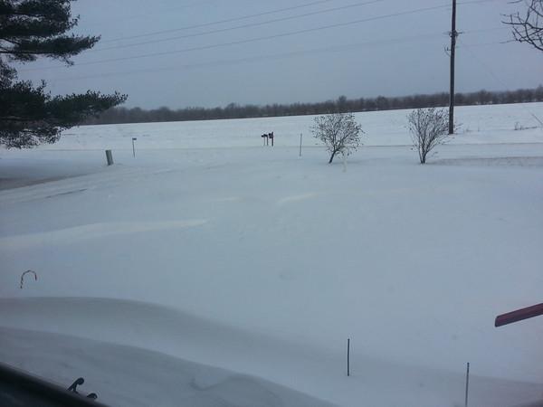 Reader photos February 4-5 snowstorm