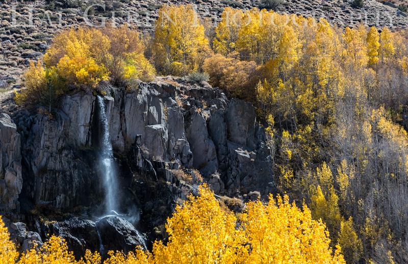 South Fork of Bishop Canyon Bishop, California 1610S-W6