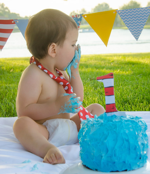 SuzysSnapshots_Jace1stbday-2955-5.jpg