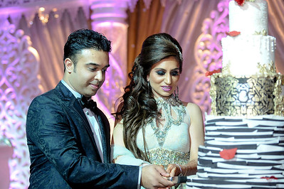 Saureen & Somil's Wedding Reception