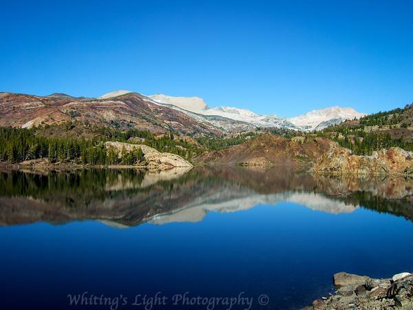 Sierra Landscapes