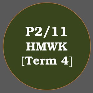 P2/11 HMWK T4