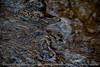ripples-wdsm-12apr15-18x12-003-2415