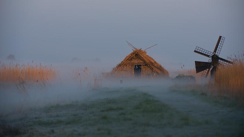 Morning mist. Ilperveld, The Netherlands.