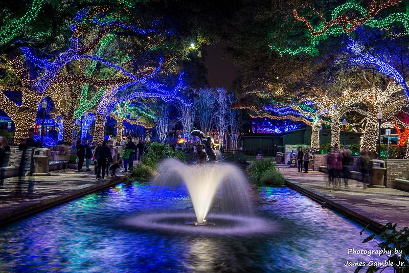 Houston-Zoo-Lights-2945.jpg