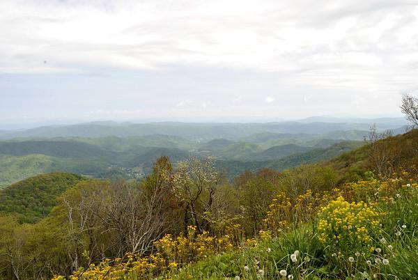 Roan Mountain, Bell Cemetary