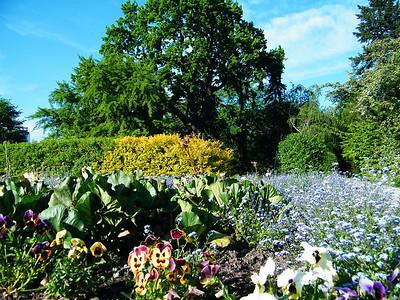 Botanic Garden Cracow 2009