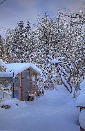 Winter 2013 landscapes