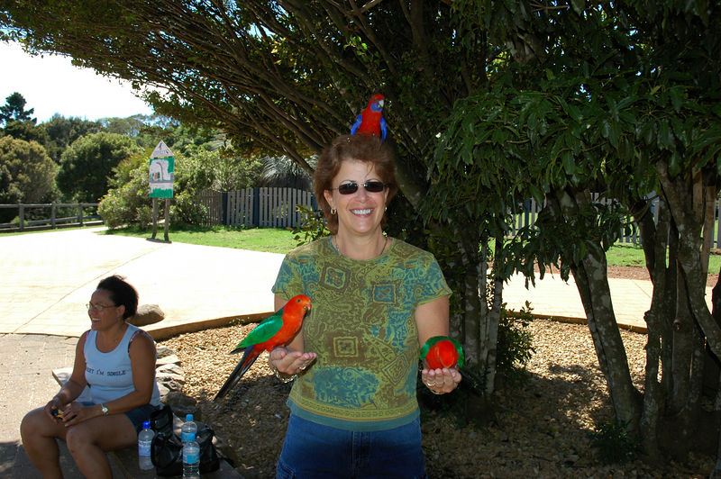 jody with more birds.JPG