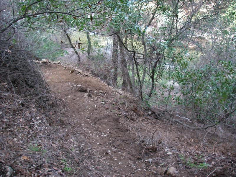 20080202041-Corba Ken Burton Trailwork.JPG