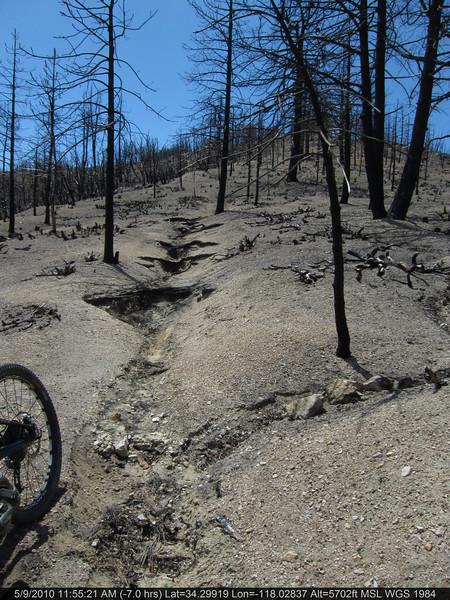 065-Vetter mtn Trail.JPG