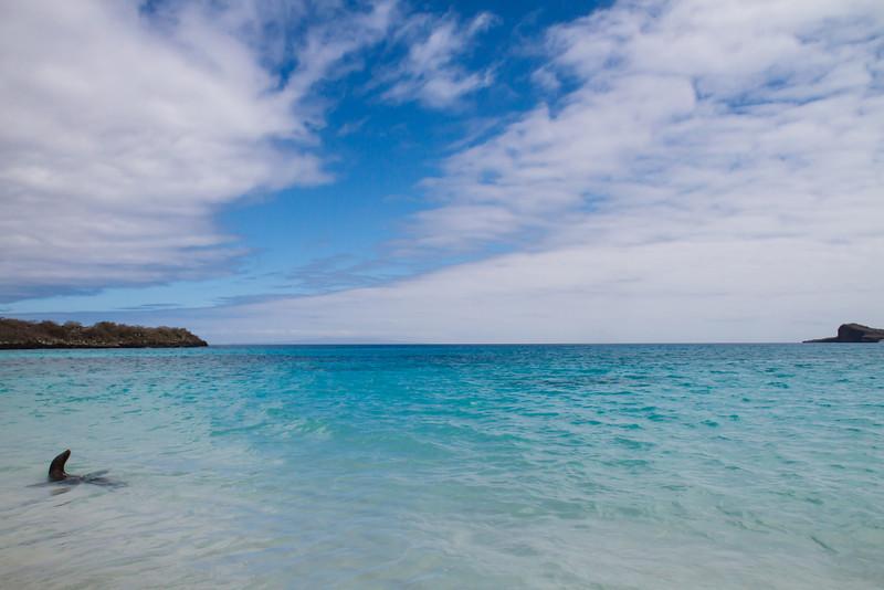 Gardner Bay, Espanola, Galapagos, Ecuador (11-21-2011) - 604.jpg