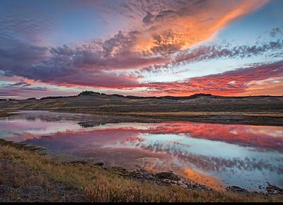 Yellowstone NP 2015