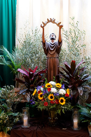 10-04-2019 Feast of St. Francis