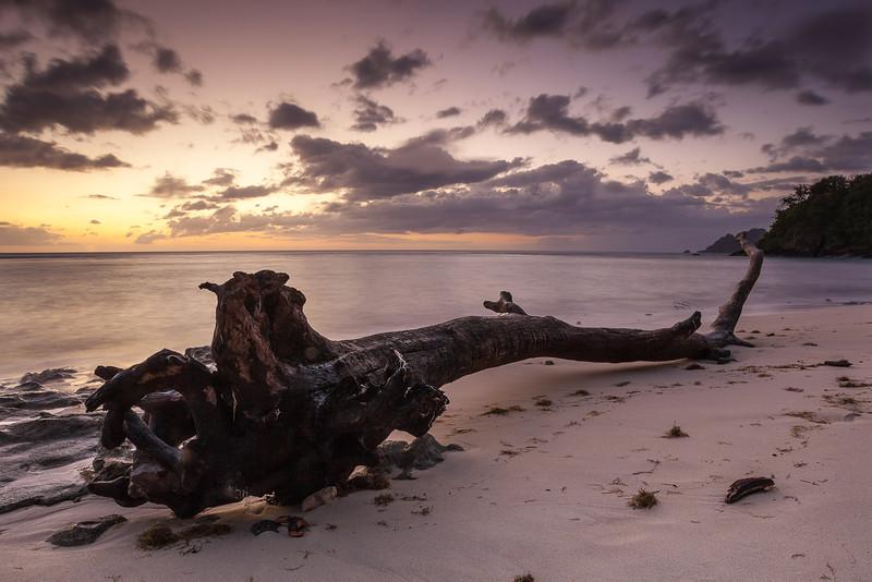 Fiji-10.jpg