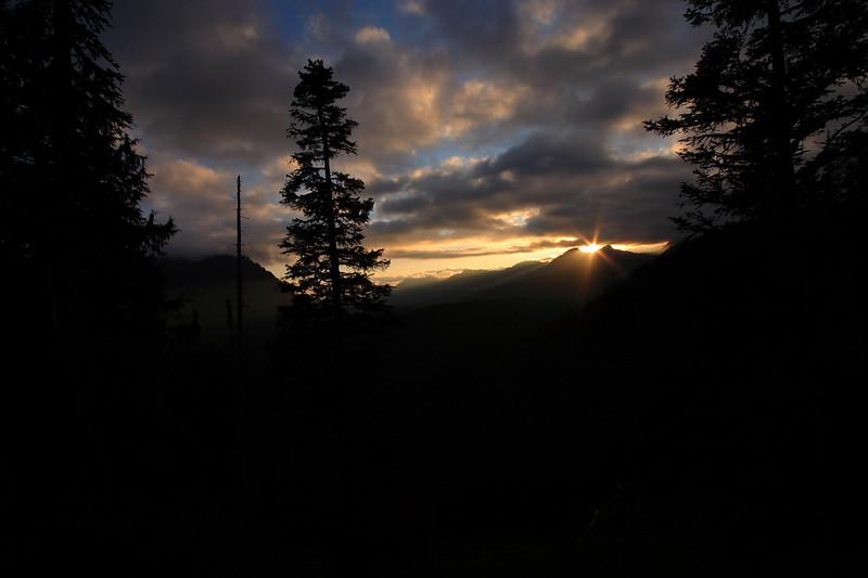 Mt. Rainier 28.JPG