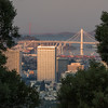 Downtown Oakland Framed by Pine Trees and Bridges Just After Sunrise