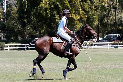 Polo - September 1 2012