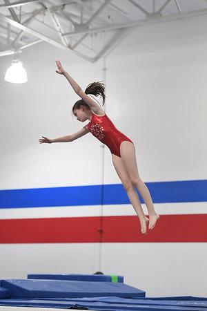2016-17 - Gymnastics Meets