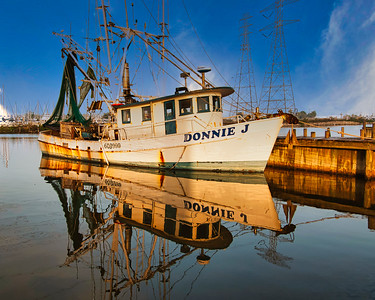 Gulf Coast Shrimp Boats