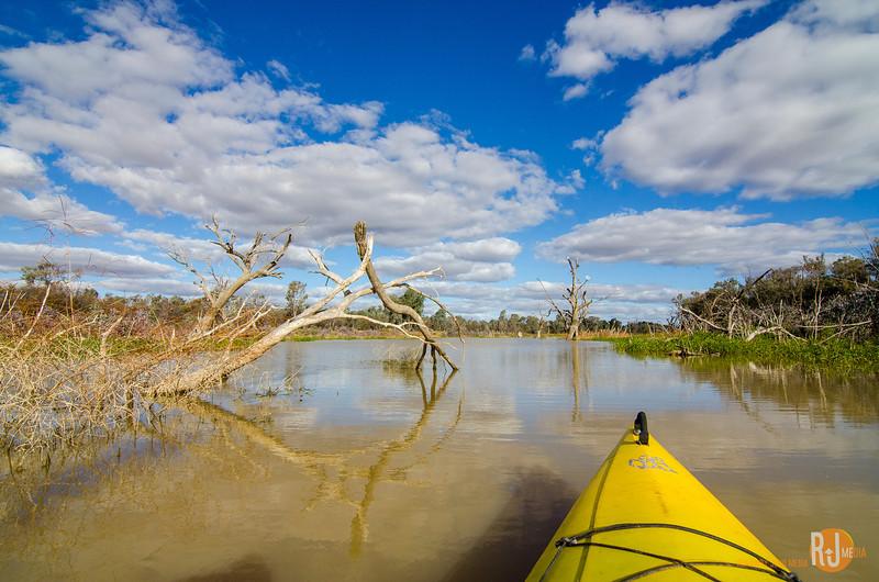 Australia-queensland-Cunnamulla-4746.jpg