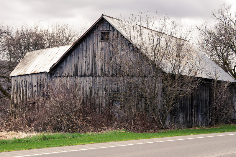 Barn Scapes 2013-0897.jpg