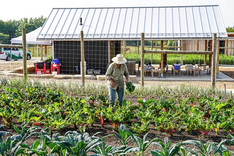 Arboretum Farm 8-19-17.JPG