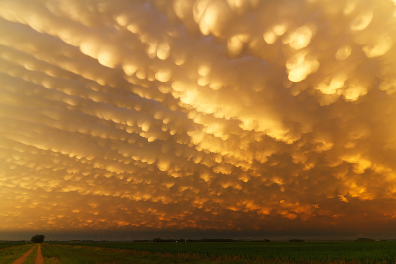 IMAGE: http://www.brettnickeson.com/Weather/Chases-and-Weather-Events/June-26-2011-Mammatus-Display/i-8Jds3WH/0/L/IMG01763-L.jpg