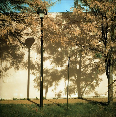 Shadows of oneself