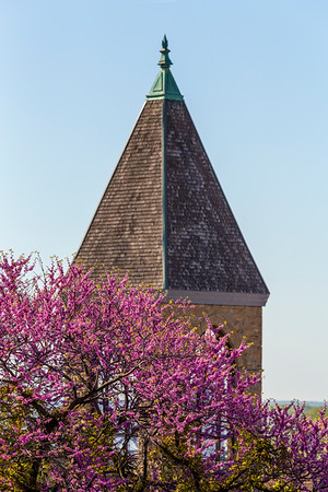 Burlington in the Spring