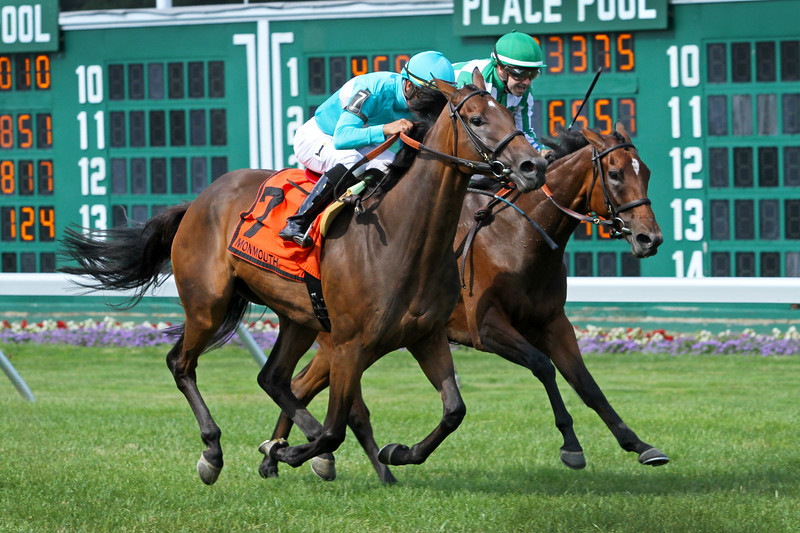 Elysea's World (Champs Elysees) and jockey Jose Ortiz win the WinStar Matchmaker Stakes (Gr III) at Monmouth Racetrack 7/29/18. Trainer: Chad Brown. Owner: Sheep Pond & All Pro Racing
