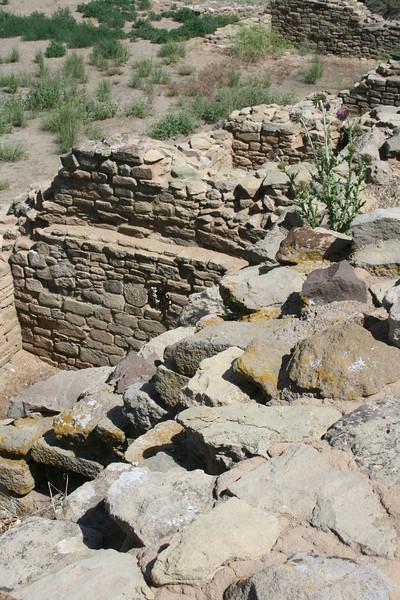 New Mexico Loren 2008 June 026.jpg