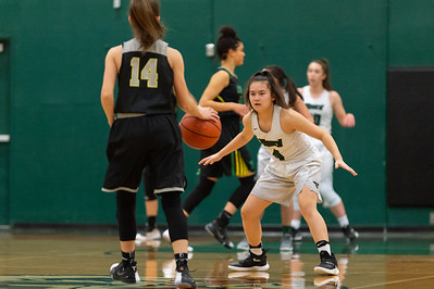 Tigard High School Girls JV Basketball vs West Linn