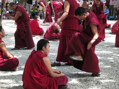 Lhasa '13