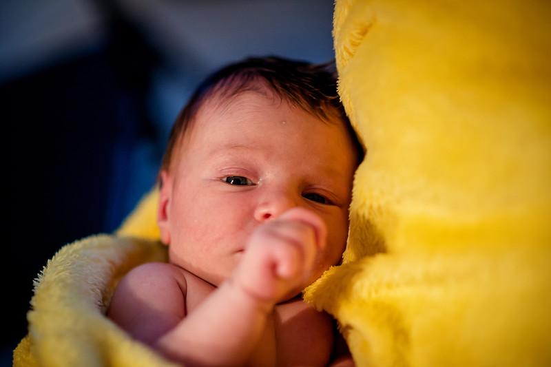 Erica-Agostinelli-newborn-PTP_1007.jpg