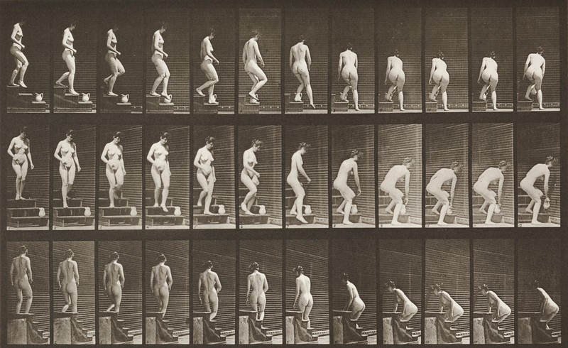 Nude woman descending stairs and stooping (Animal Locomotion, 1887, plate 149)