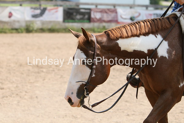 Equestrian Competitions