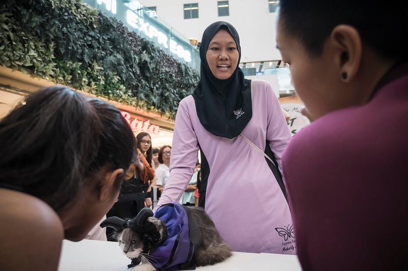 VividSnaps-The-Seletar-Mall-CAT-Dress-Up-Contest-244.jpg
