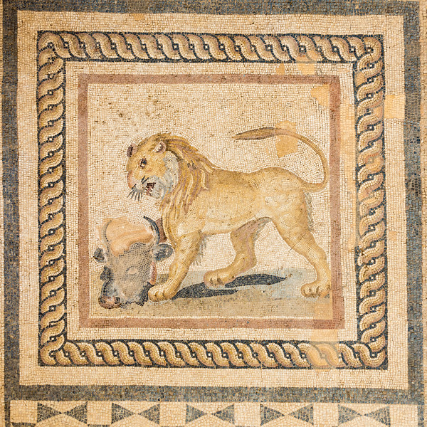 Lion mosaic on the floor of a Terrace House