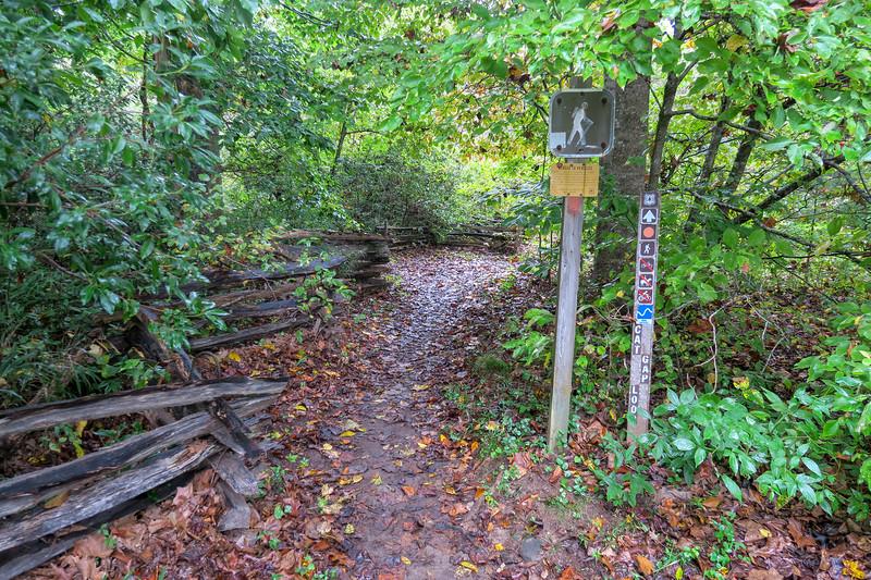 Cat Gap Loop East Trailhead -- 2,340'
