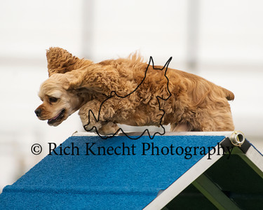 Lancaster Kennel Club September 28-29