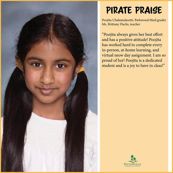 Pirate Praise Chalamalasetti.jpg