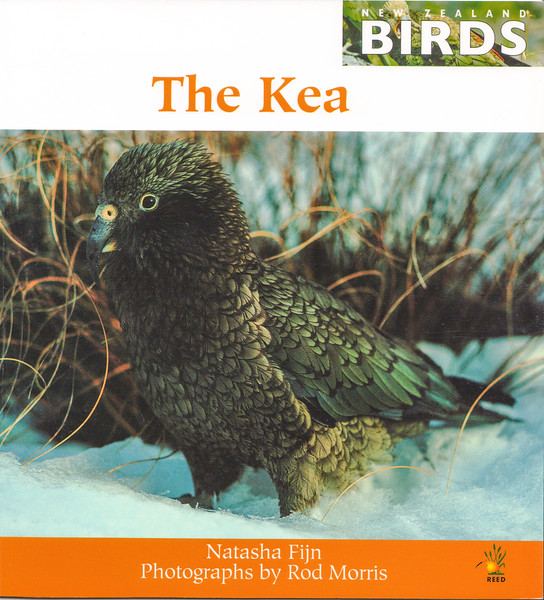 'New Zealand Birds: The Kea' is a fantastic gift for intermediate readers (age 8+) and can be purchased directly from us for $34.99 (+P&P). For more information contact the Production Manager at info@rodmorris.co.nz.