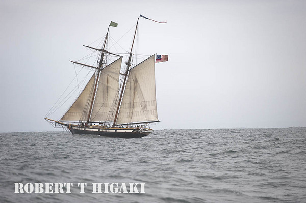 The Lynx- tall ship